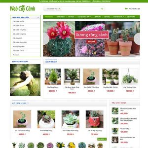 Công ty thiết kế web Hà Nội giá rẻ, trọn gói