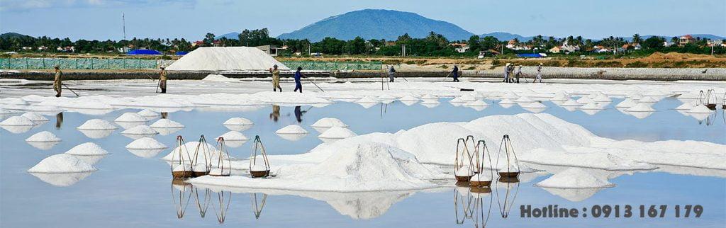 Công ty Sản xuất kinh doanh muối Minh Quyên